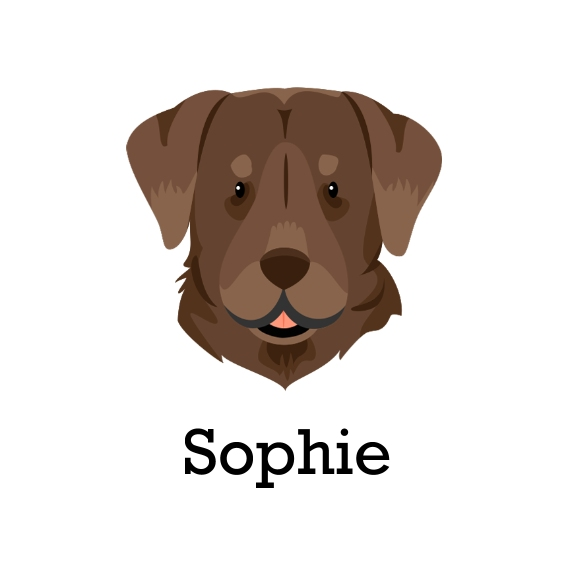 Dog Breeds Retractable Leash, Gift -Labrador Retriever
