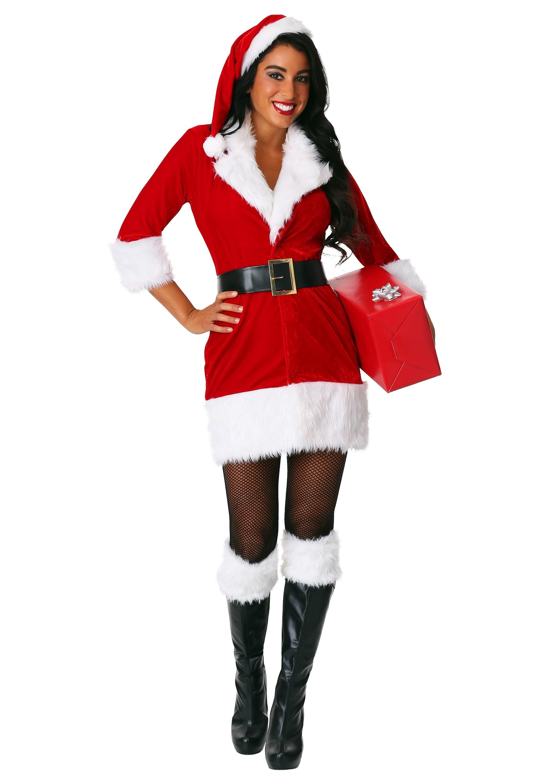 Ladies' Plus Size Secret Santa Costume