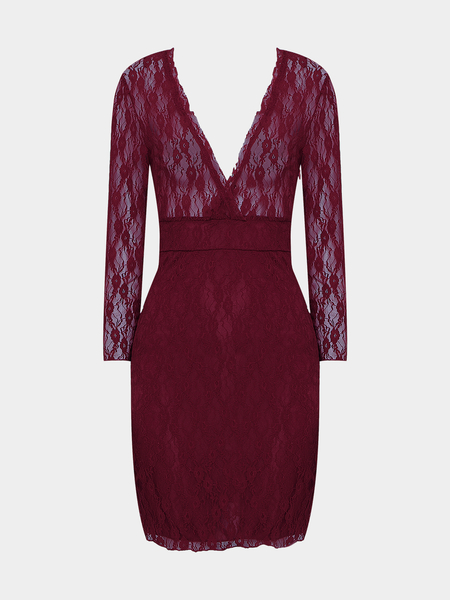 Yoins Burgundy Plunge Neck Lace Mini Dress