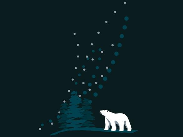 Northern Lights (take Ii) T Shirt