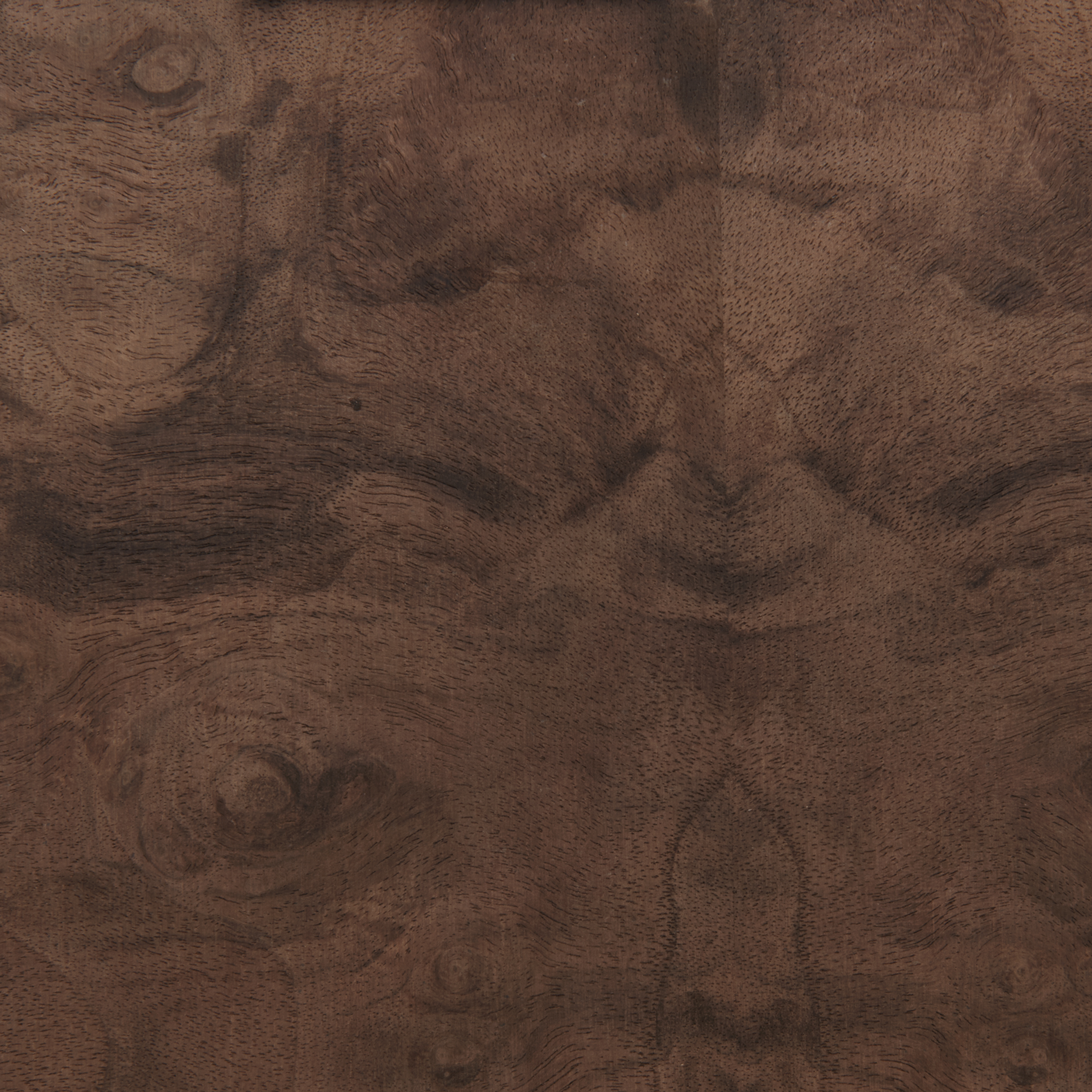 Walnut Burl 4' x 8' Veneer Sheet, 3M PSA Backed