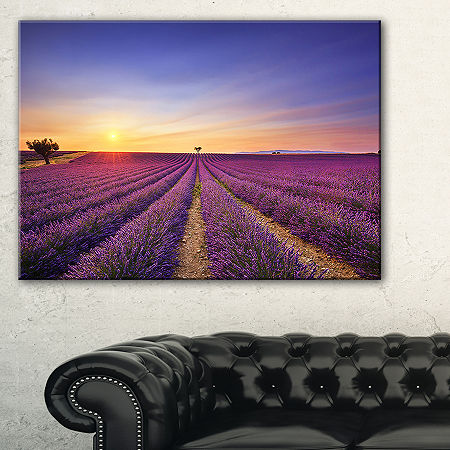 Designart Lavender Field In Provence France Canvas Art, One Size , Blue