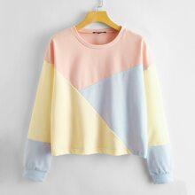 Drop Shoulder Cut and Sew Pullover