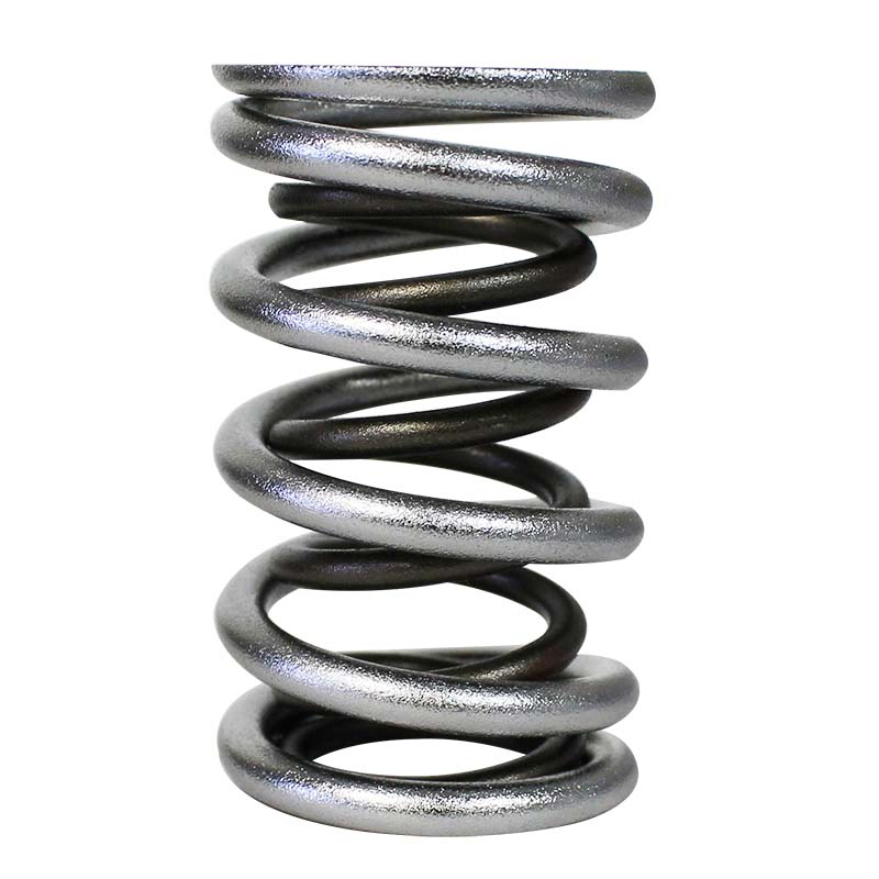 Electro Polished Pro - Alloy Dual Valve Springs; 1.640 Howards Cams 98739-1 98739-1