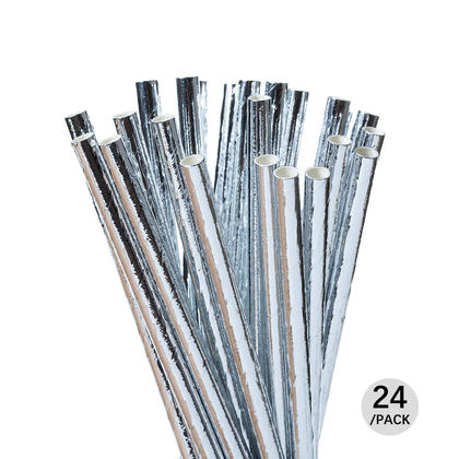 Silver Disposable Party Drinking Paper Straws for Celebration and Parties, 24Pcs - Livingbasics™