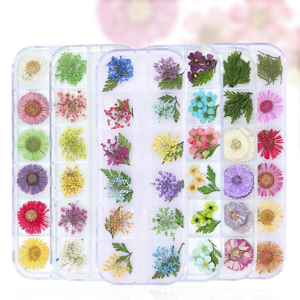 Nail Decoration Flower Accessories 12-Grid Box Fashion Nail Art Flowers Nails Art Tool