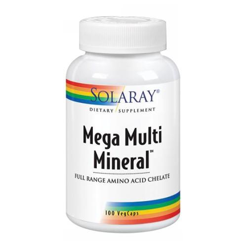 Mega Multi Mineral 100 Caps by Solaray