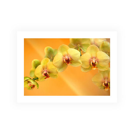 Brushstone Yellow Phalaenopsis Canvas Wall Art, One Size , Yellow