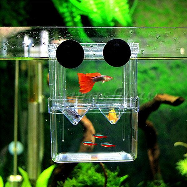 Aquarium in-Tank Breeder Box for Fish Tank, Breeding Incubator for Small Fish Hatchery, Acrylic Divider for Shrimp Clown