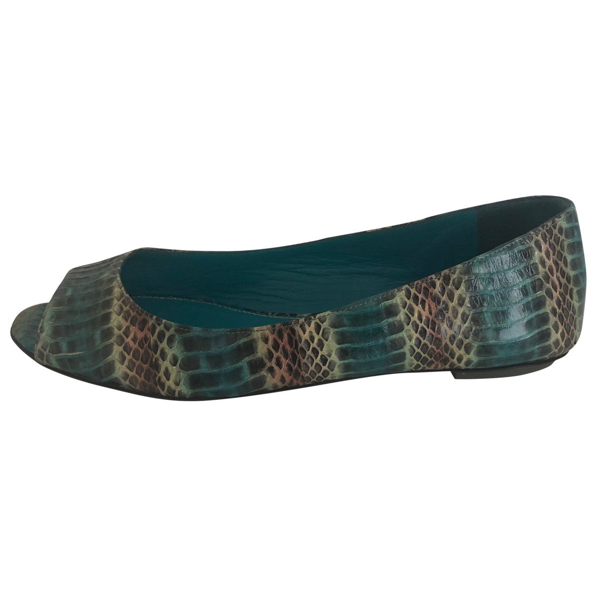 Sergio Rossi \N Green Water snake Ballet flats for Women 37 EU