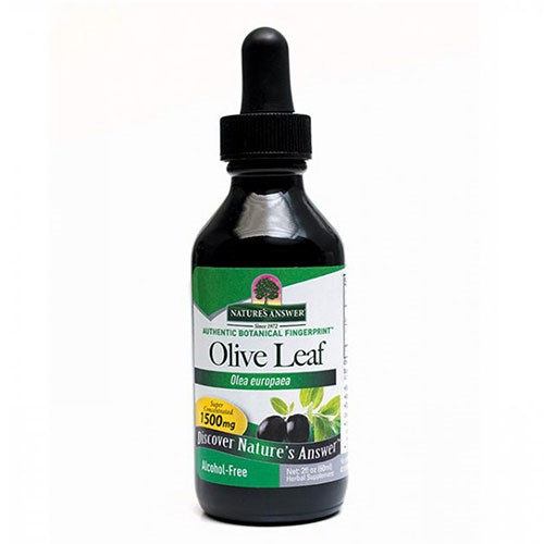 Olive Leaf - OleoPein 2 Oz by Nature's Answer