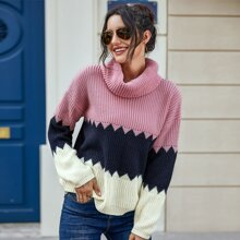 Turtleneck Colorblock Ribbed Knit Sweater