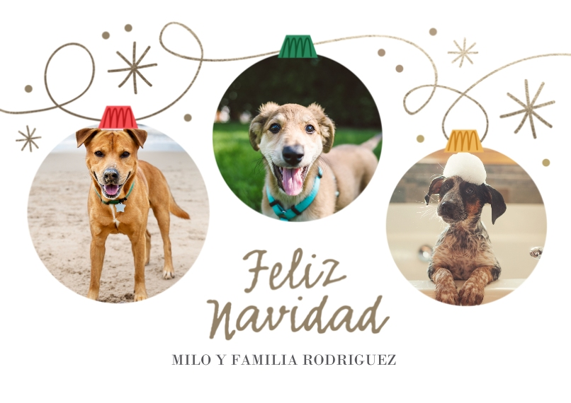 Holiday Photo Cards 5x7 Cards, Premium Cardstock 120lb with Scalloped Corners, Card & Stationery -Feliz Navidad Ornaments