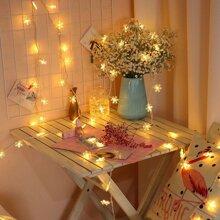 20pcs Snowflake Bulb String Light 12v