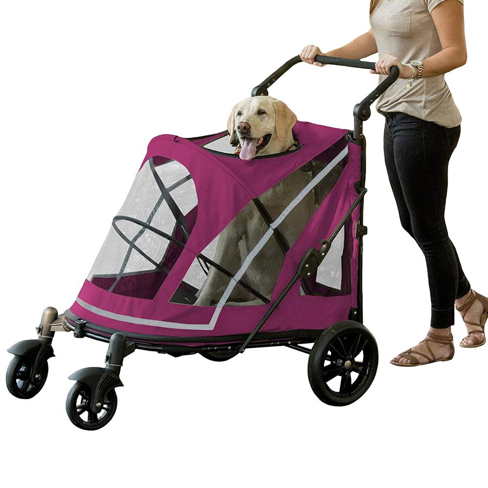Pet Gear Expedition No-Zip - Boysenberry