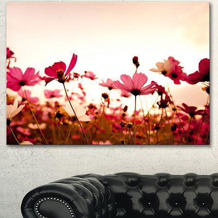 Designart Cosmos Flowers On Pink Background FloralCanvas Art Print, One Size , Pink