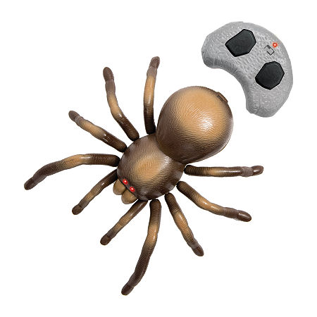 Discovery RC Tarantula, One Size , Brown