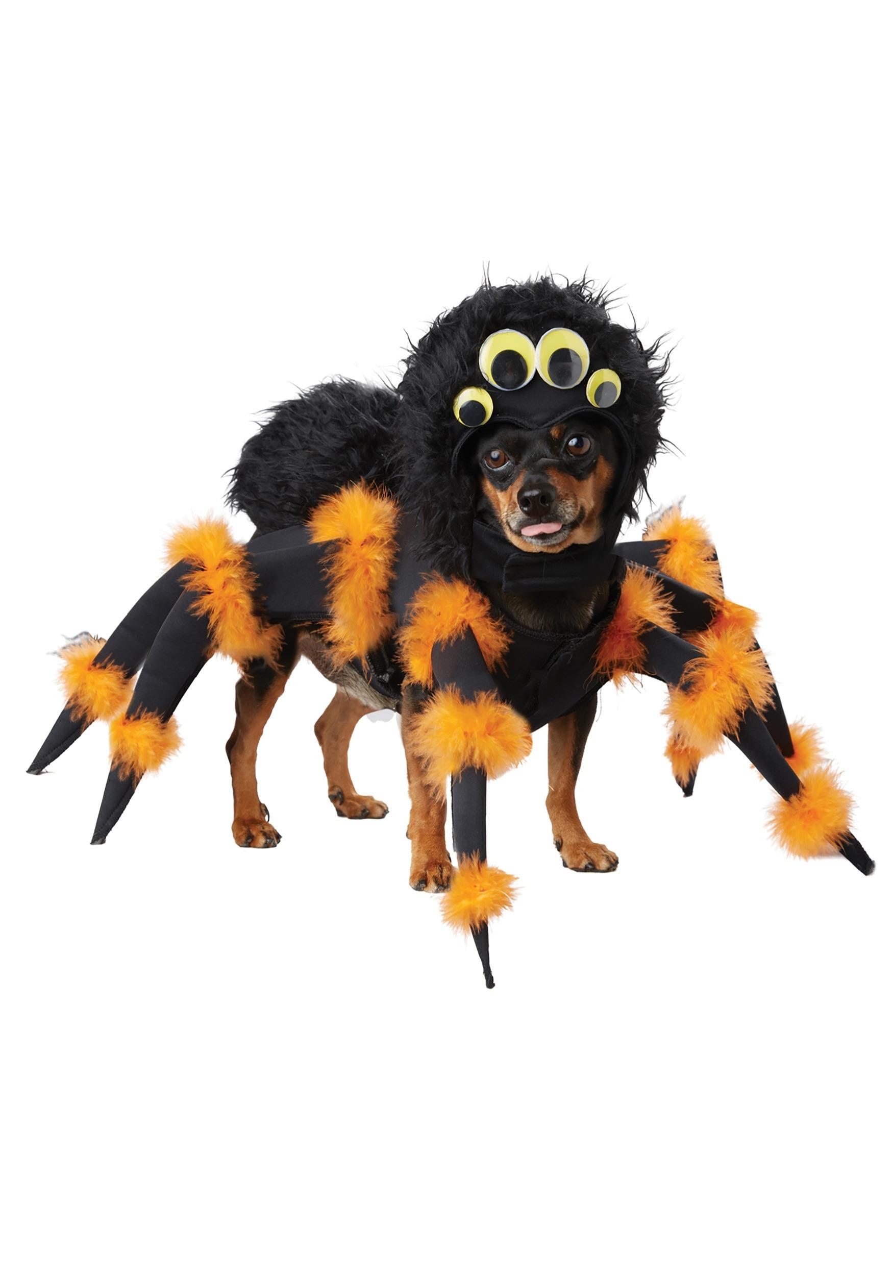 Puppy Spider Costume