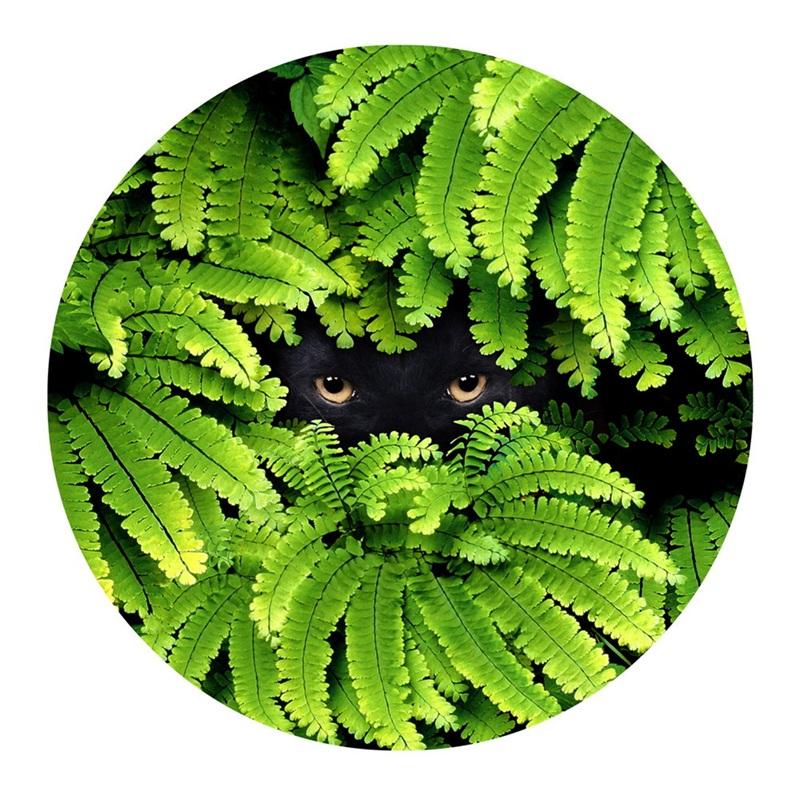 Black Bear Eyes Surrounded by Green Leaves Pattern PVC Nonslip Doormat