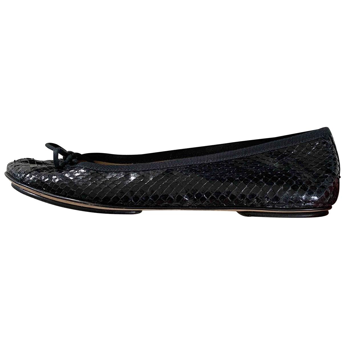 D&g \N Black Water snake Ballet flats for Women 37 EU