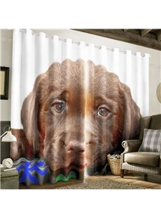 3D Brown Melancholy Lonely Dog Printed Custom Blackout Curtain for Living Room and Bedroom