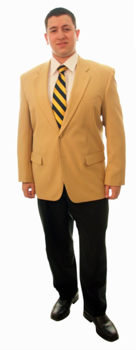 Single Breasted 2 Button Solid Camel Blazer