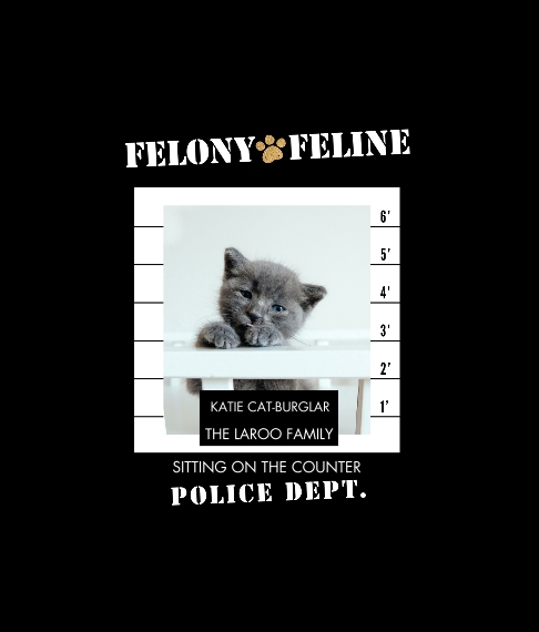 Pet Framed Canvas Print, Oak, 8x10, Home Décor -Felony Feline