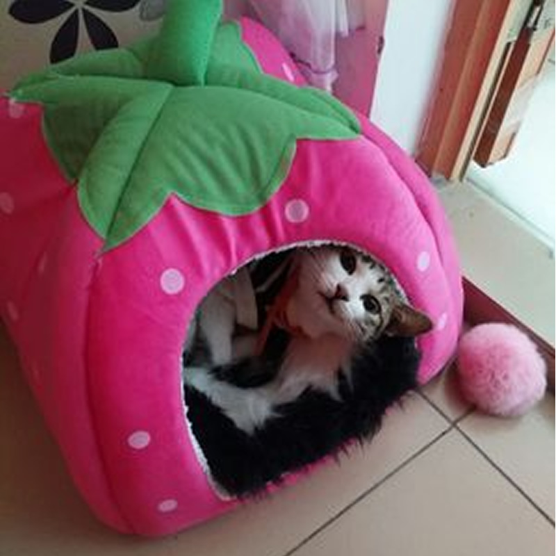 S-XXL Size Lovely Strawberry House for Pet Dog Cat