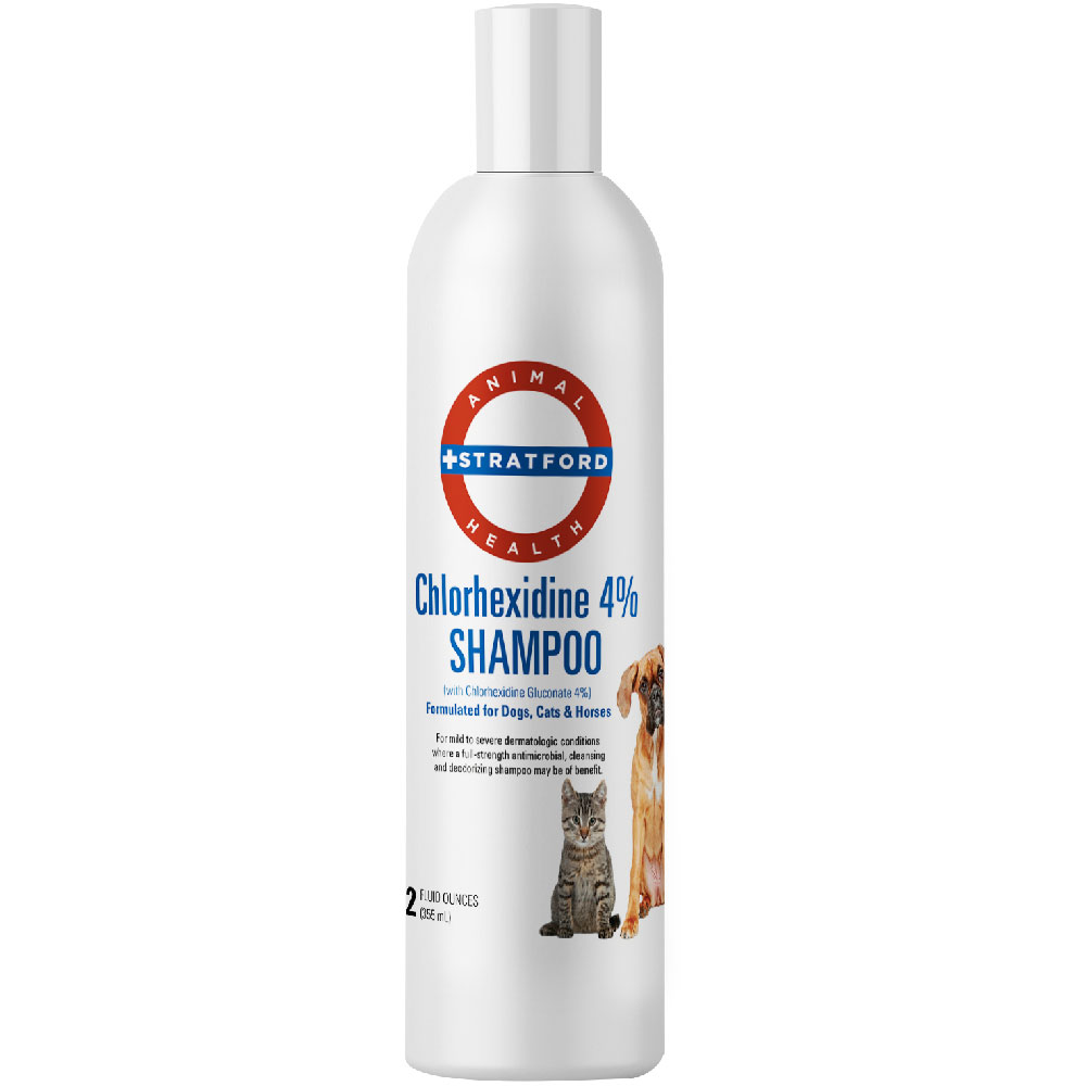 Stratford Chlorhexidine 4% Shampoo (12 oz)