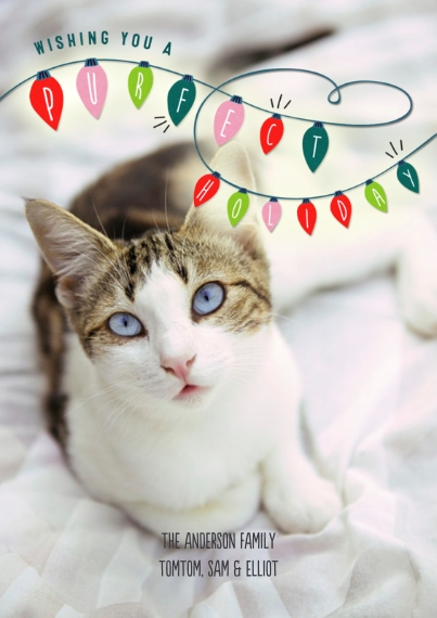 Pets Flat Matte Photo Paper Cards with Envelopes, 5x7, Card & Stationery -Purfect Holiday