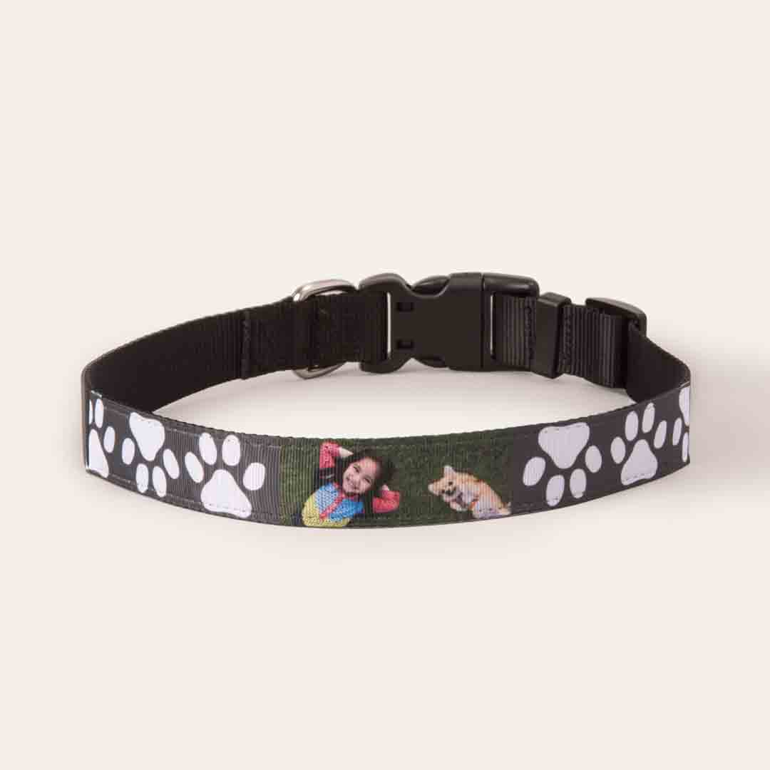 Featured Large Pet Collar, Gift -Well Have the Woofles