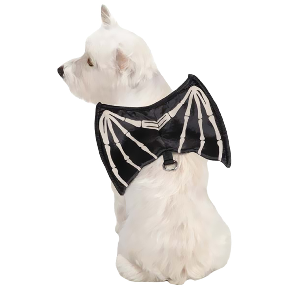 Zack & Zoey Skeleton Glow Wing Harness Costume - Large