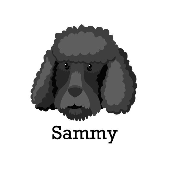 Pet Canvas Print, 12x12, Home Décor -Poodle