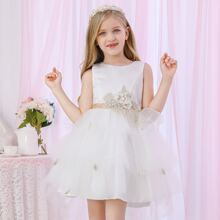 Girls Appliques Bow Back Mesh Princess Dress
