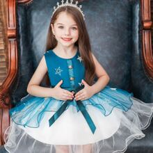 Toddler Girls Star Embroidery Mesh Panel Gown Dress