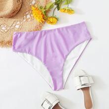Plus High Waisted Bikini Panty