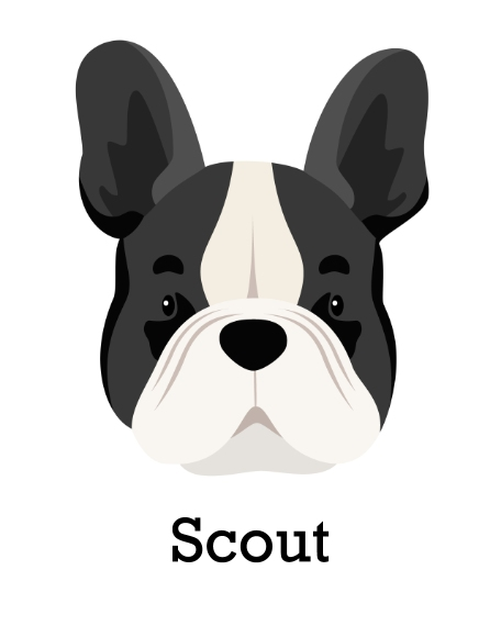 Pet 16x20 Poster, Home Décor -French Bulldog 3