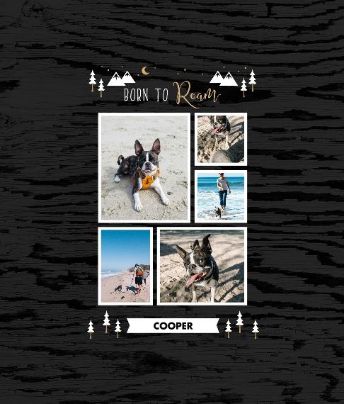 Pet Framed Canvas Print, Chocolate, 8x10, Home Décor -Adventure Bud