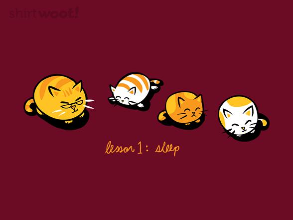 Cat Education T Shirt