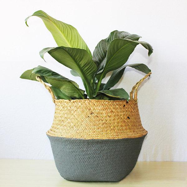 Seagrass Belly Storage Basket Shopping Bag Box Organizer Plant Pot
