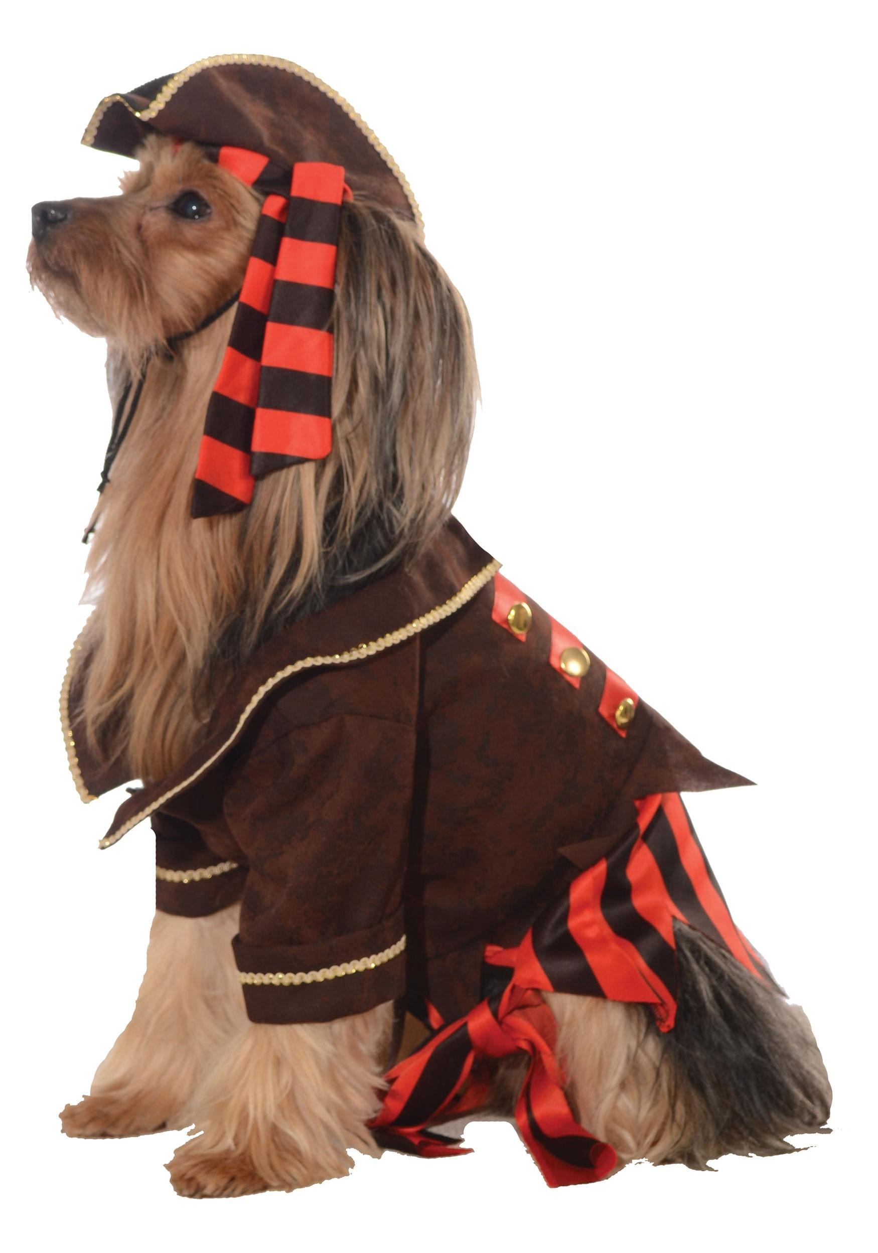 Dog Pet Pirate Costume