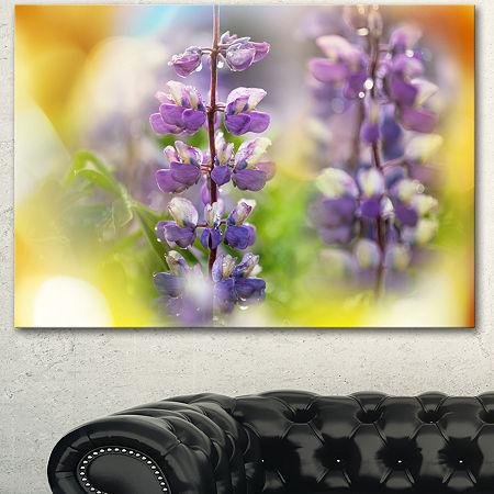 Designart Beautiful Blue Lupin Flowers Large Flower Canvas Art Print, One Size , Blue