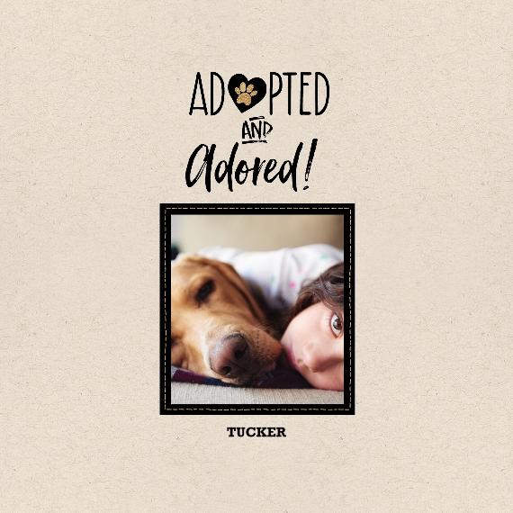 Pet Canvas Print, 12x12, Home Décor -Pet Rescue