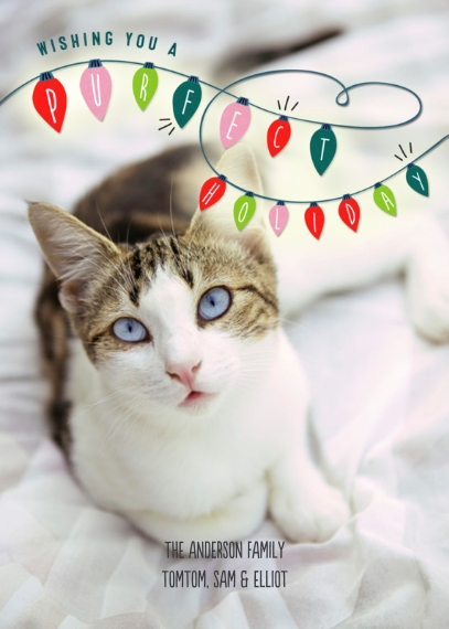 Pets 5x7 Folded Cards, Premium Cardstock 120lb, Card & Stationery -Purfect Holiday