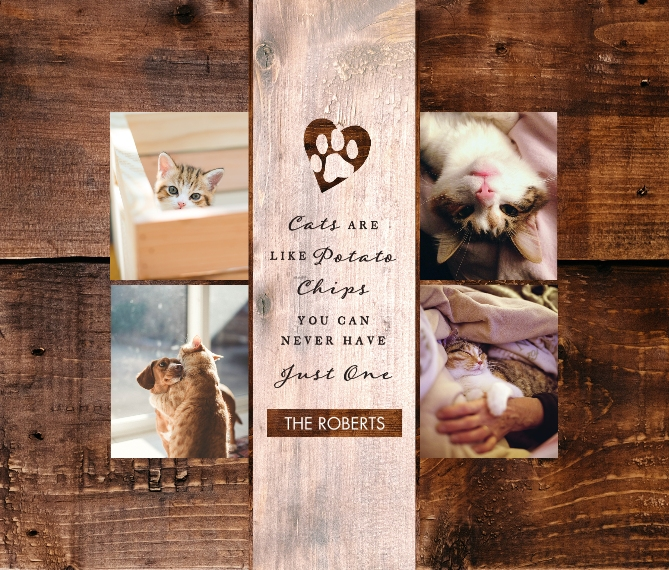 Pet Framed Canvas Print, Chocolate, 8x10, Home Décor -The Good Kitty