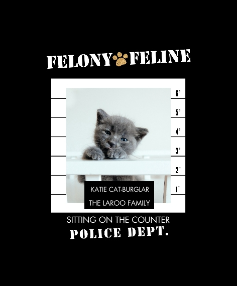 Pet Canvas Print, 11x14, Home Décor -Felony Feline
