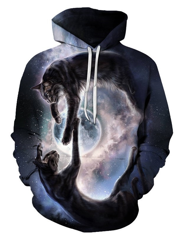 Unisex 3D Print Fashion Hoodie Pullover Hooded Sweatshirt for Women and Men
