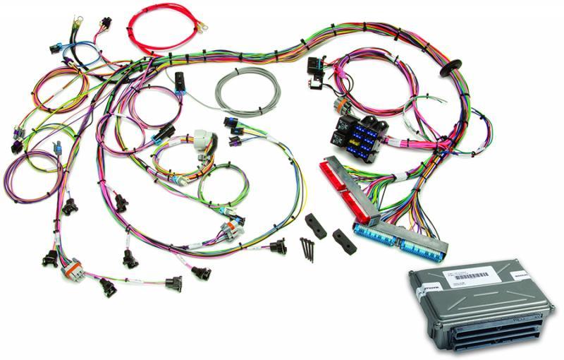 Painless Wiring 60713 1998-2004 GM LS1/LS6 EFI Harness (60508 w/VATS Removed ECM)