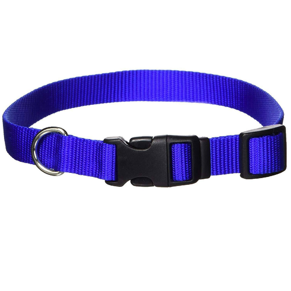 Nylon Adjustable Collar 1 inch - Blue