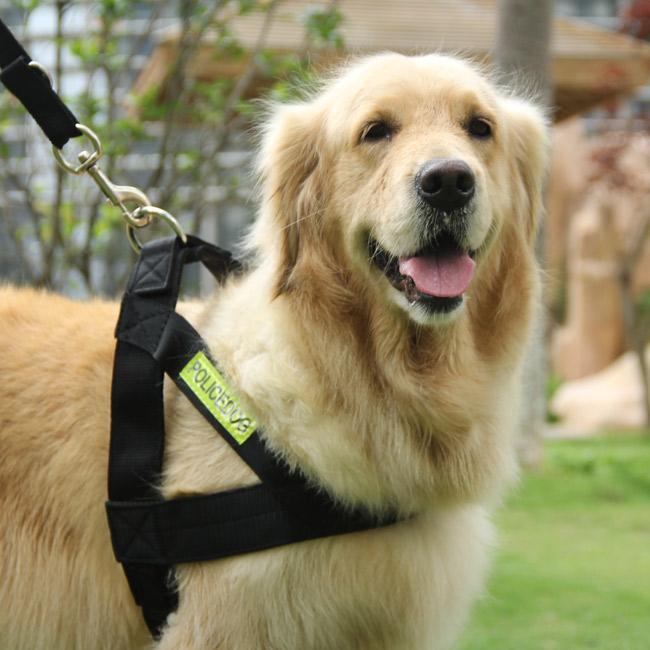 New Arrival Nylon Plaid High Quality Comfort Dog Harnesses